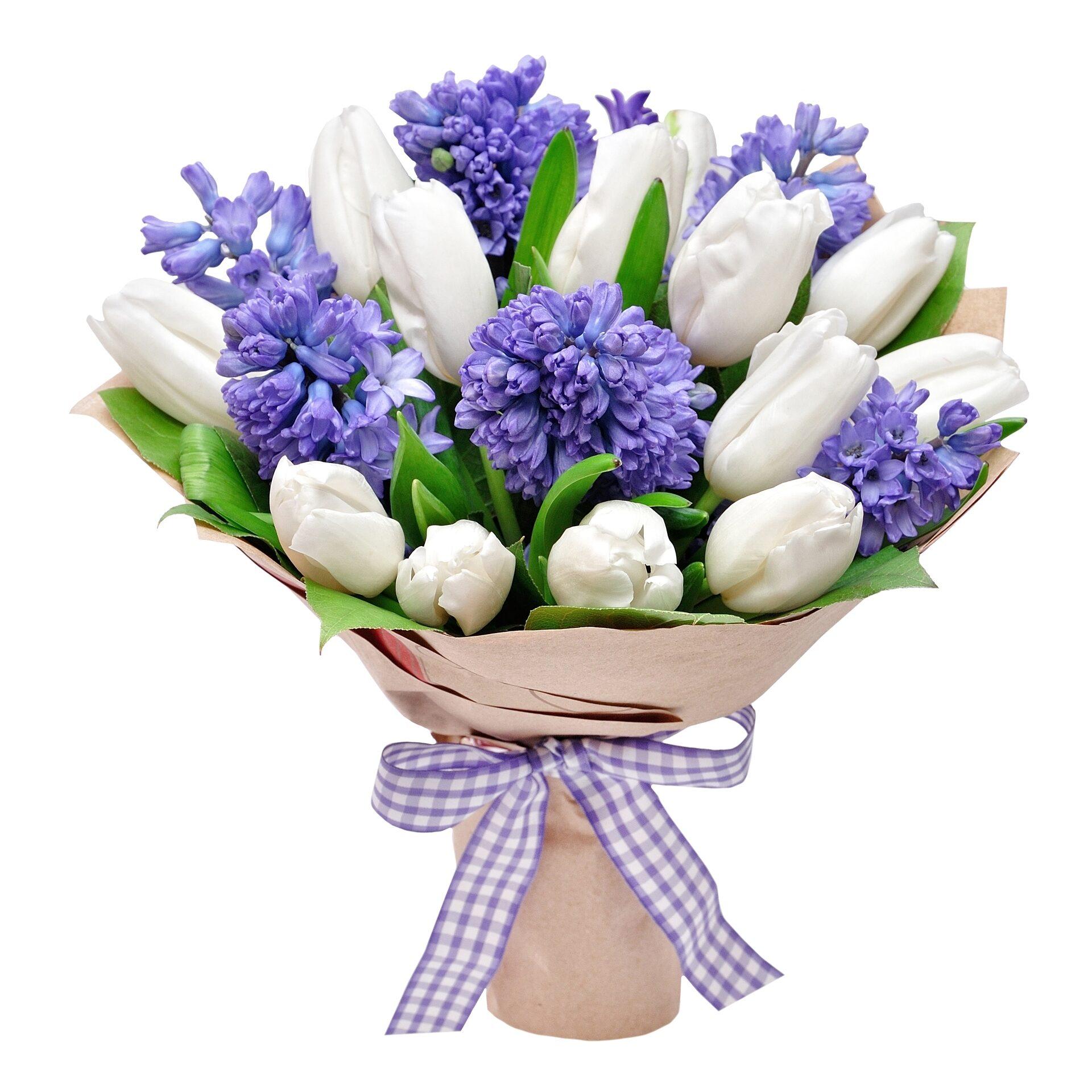 конькобежка, цветы гиацинты фото букеты техника